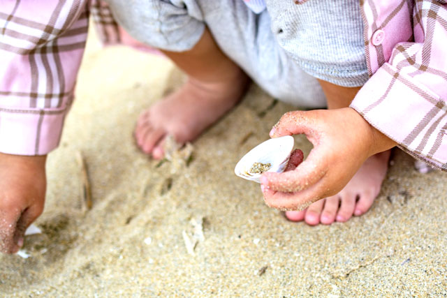 ファミリーに優しい 紀北町島勝浦 和具の浜海水浴場