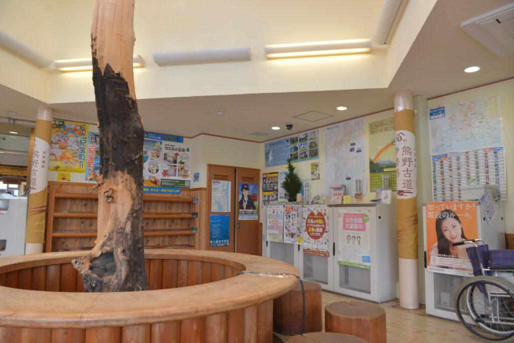 道の駅紀宝町ウミガメ公園の画像